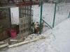 10.1.2009_b.jpg